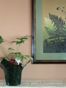 Fern on the mantel